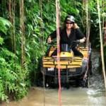 Jungle Mud