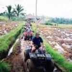 Rice Mud